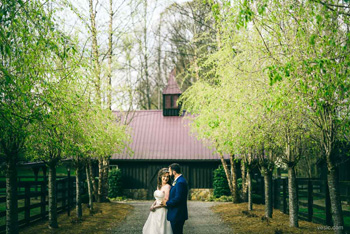 NC_Mountain_Wedding-28